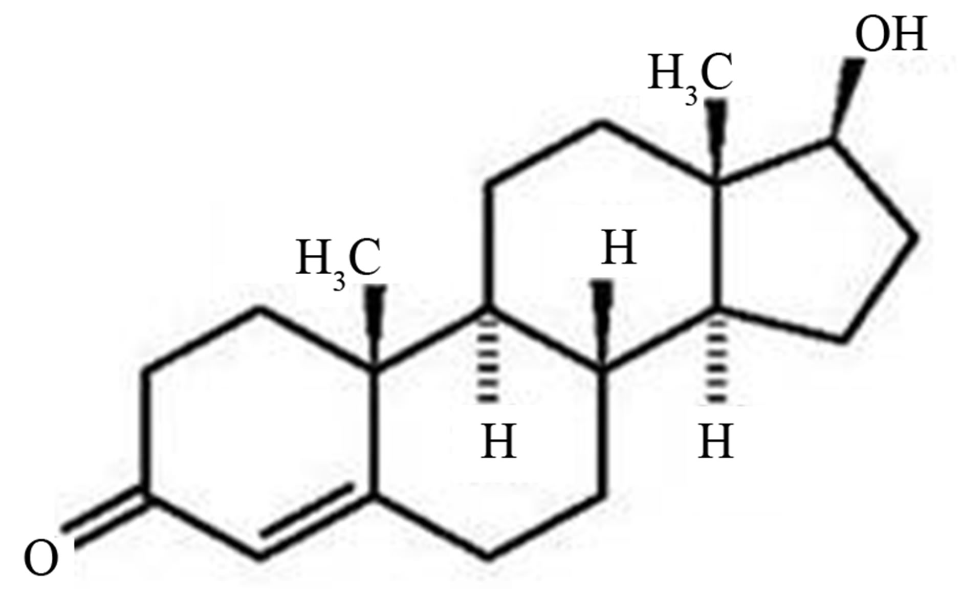 Structure of Testosterone