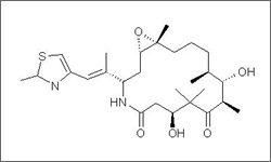 Diagram of the molecular structure of Ixabepilone