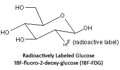 radioactively labeled glucose structure