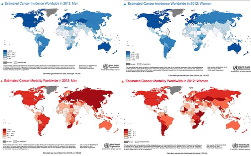 global distribution of cancer incidence and mortality in men and women