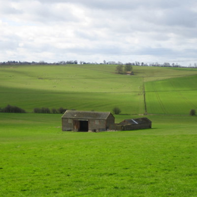 Barn surrounded by green grass fields