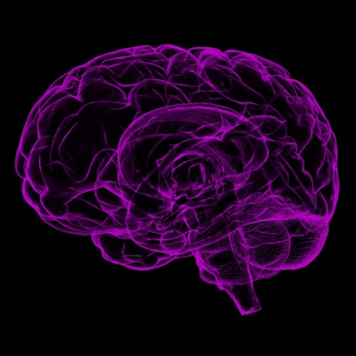 graphic of a brain - purple on black