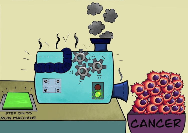 cancer cells reproduce by supplying their own signals - cartoon